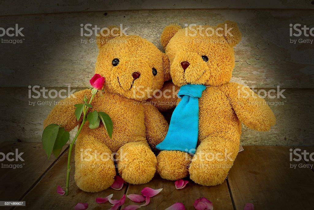 couples teddy bear. stock photo