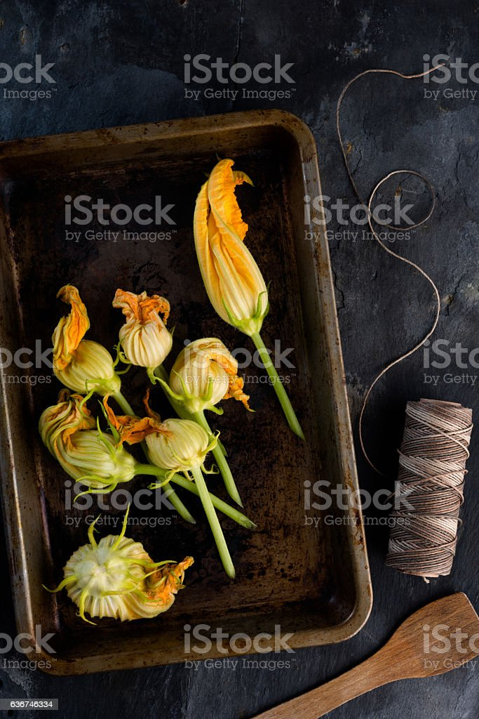 courgette flowers stock photo