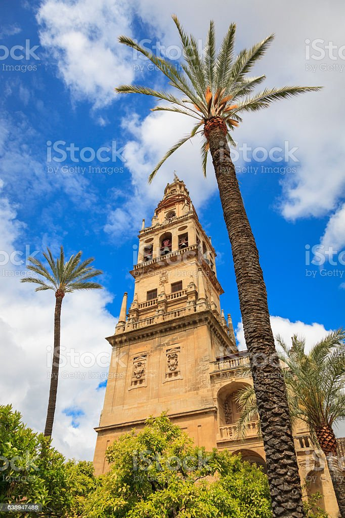 Courtyard of the Mezquita in Cordoba. stock photo