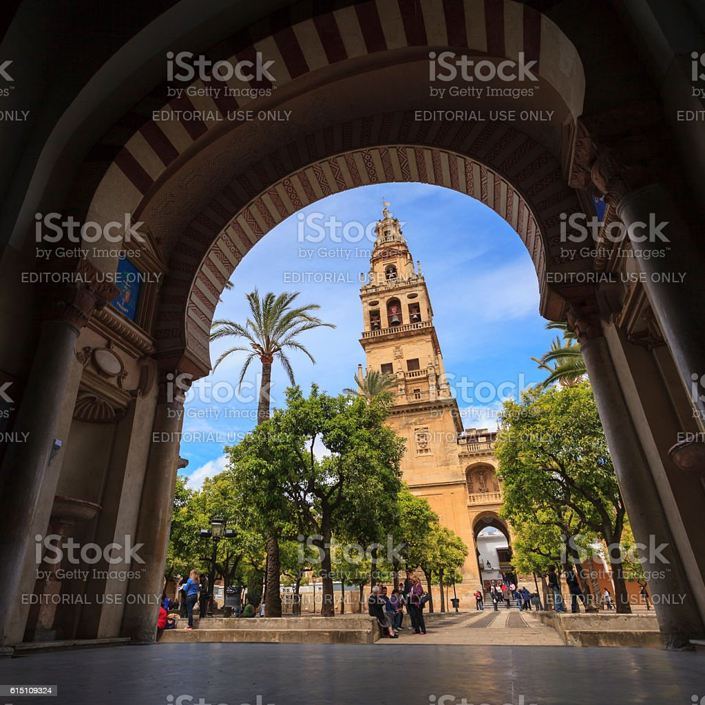 Courtyard of the Mezquita in Cordoba, Spain stock photo