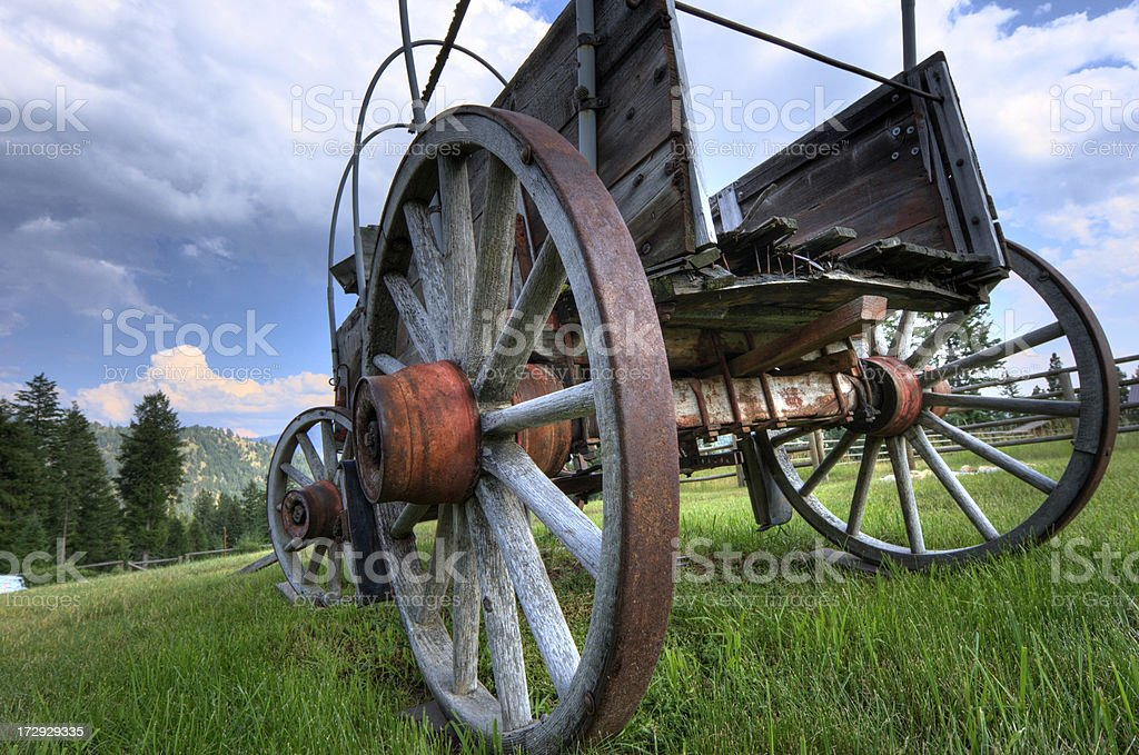 Covered Wagon in the Grass royalty-free stock photo