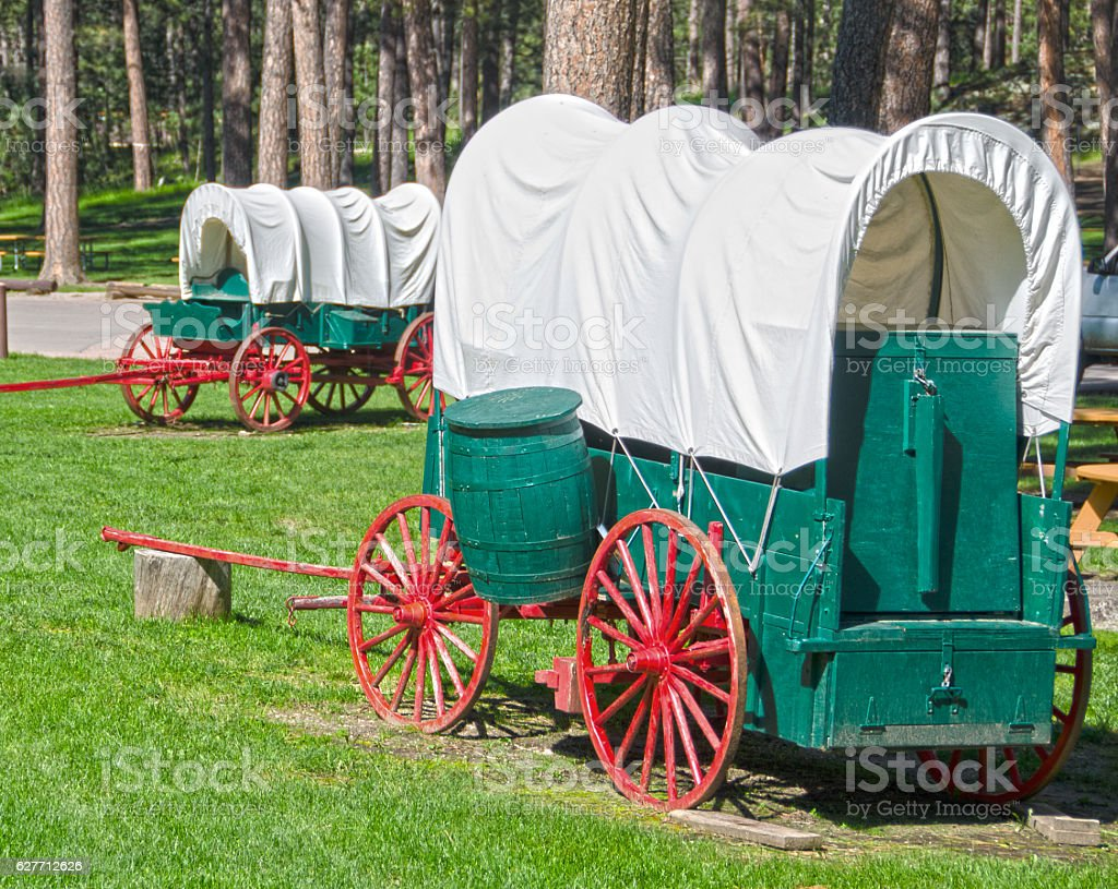 Covered Wagons in Custer State Park stock photo