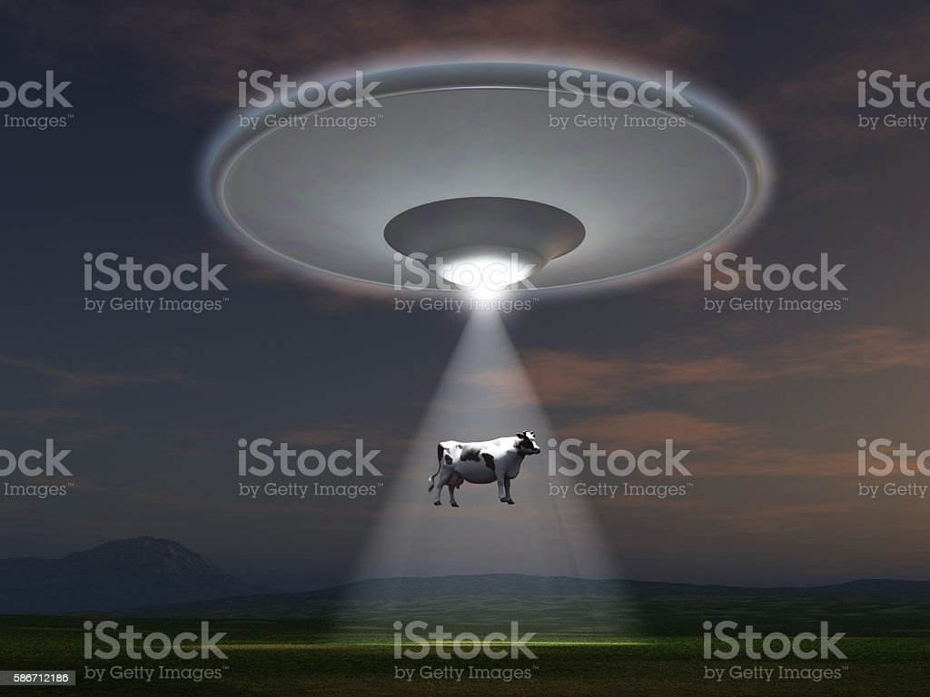 Cow abducted by a UFO stock photo