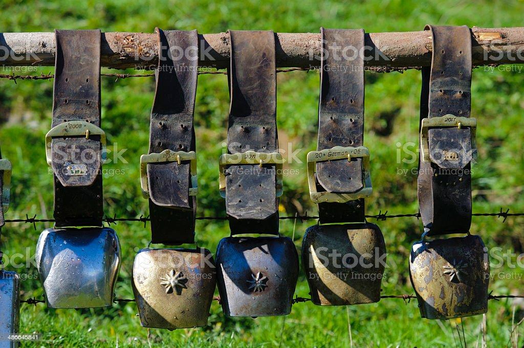 cow bells in line stock photo