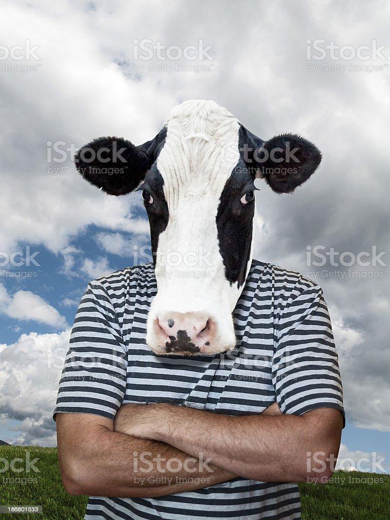 Cow boy royalty-free stock photo