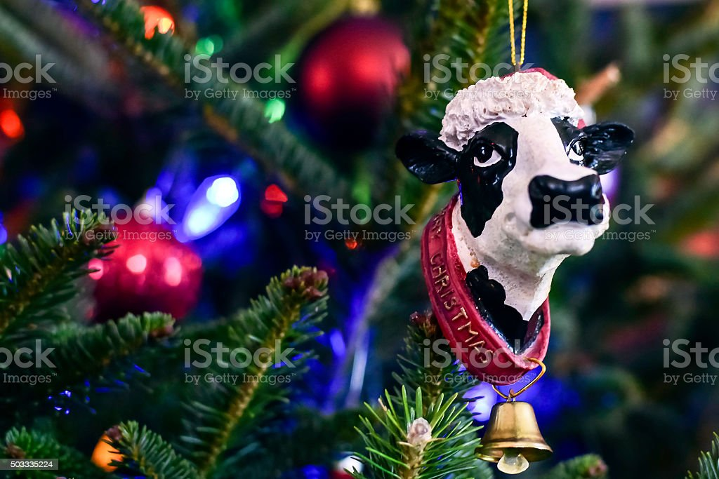 Cow Christmas ornament to the right stock photo