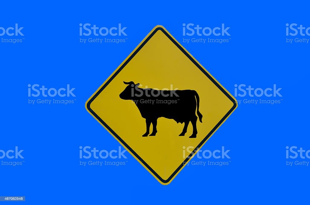 Cow Crossing Sign stock photo