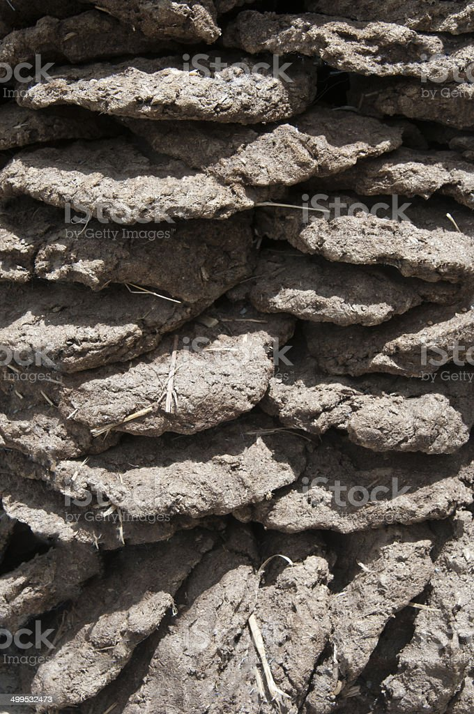 Cow dung cakes stock photo