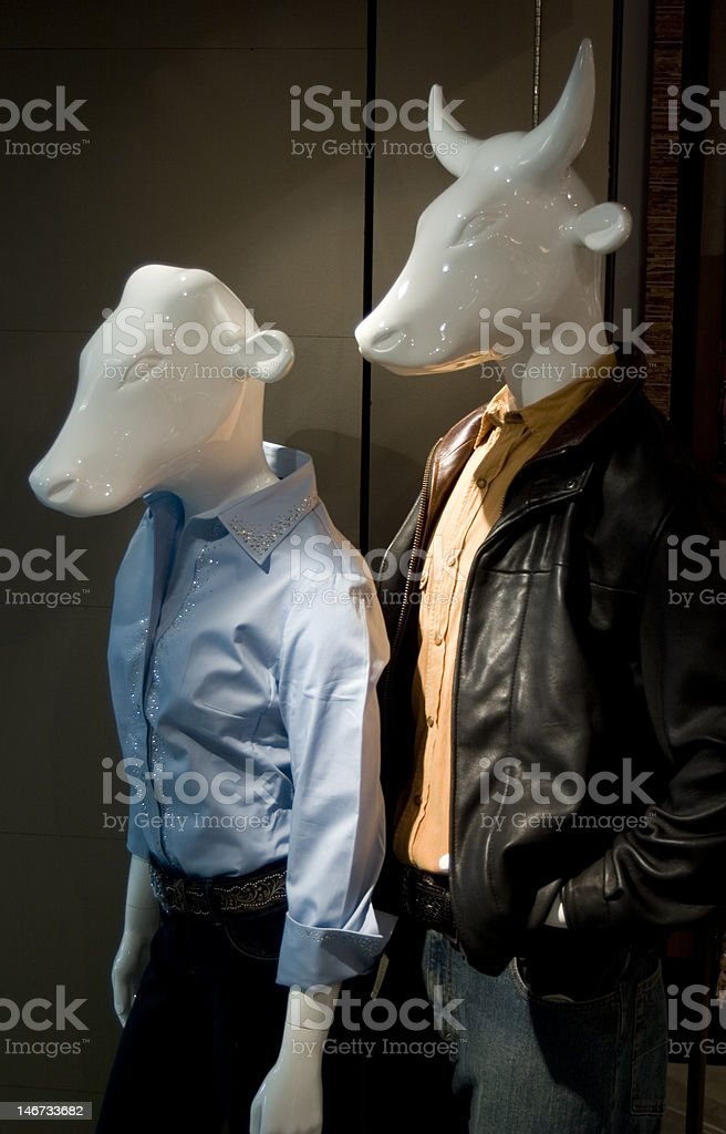 Cow Mannequins royalty-free stock photo