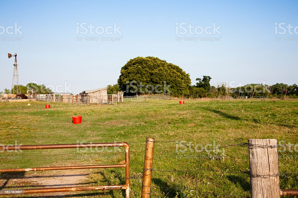 Cow or horse lot with red feed buckets.  Foreground focus. stock photo
