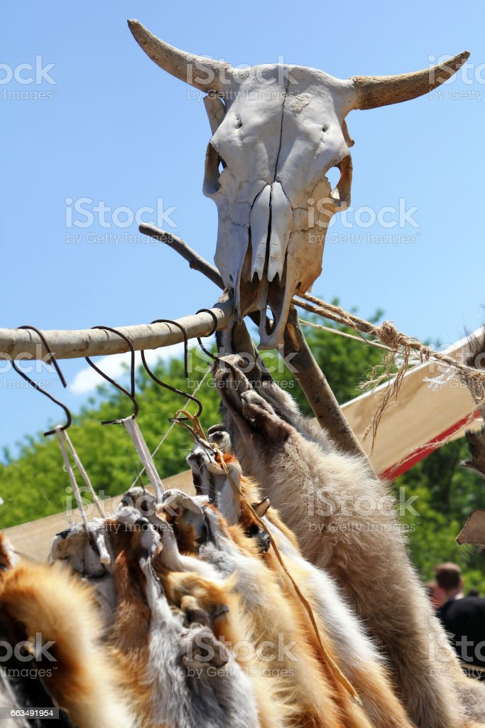 Cow skull and fox skins at fair of artisans stock photo