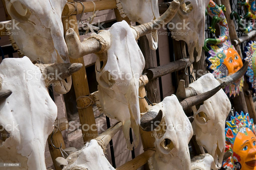 Cow Skull in Marketplace stock photo