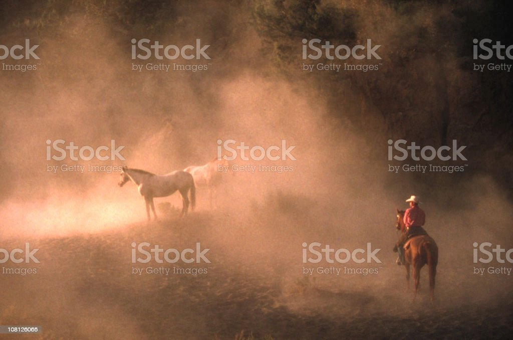 Cowbboy watches over wild horses at dawn royalty-free stock photo