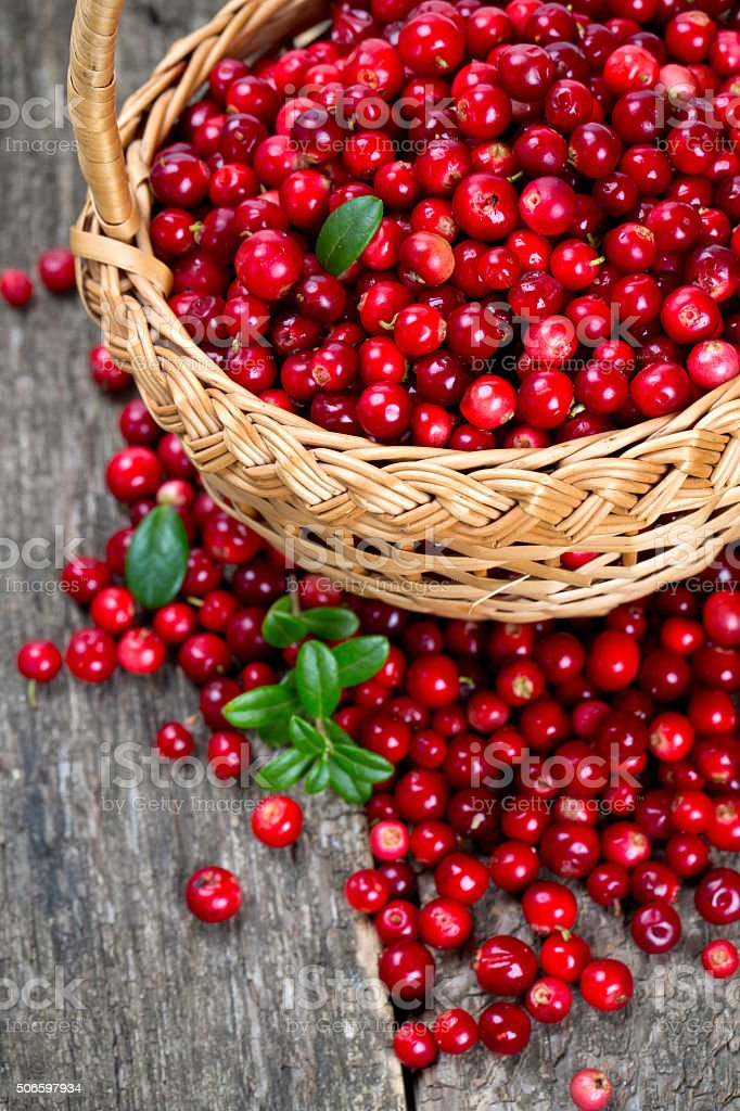 cowberries in a basket on wooden surface stock photo