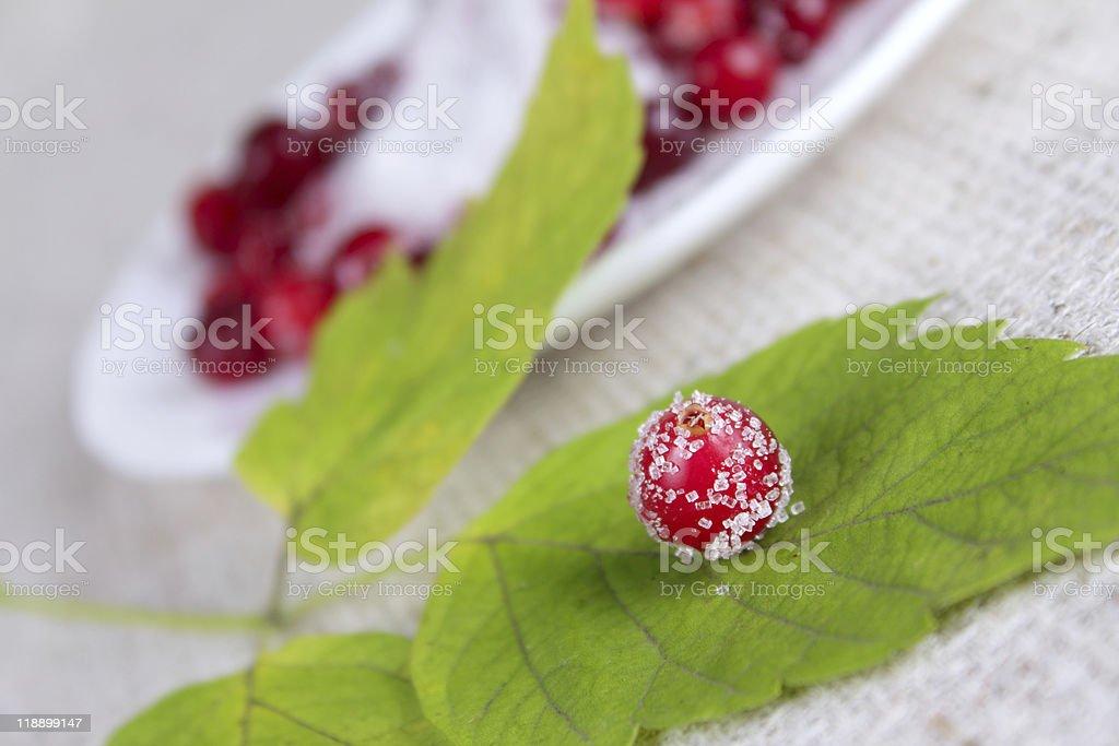 Cowberry berry usiane cukru na talerzu zbiór zdjęć royalty-free
