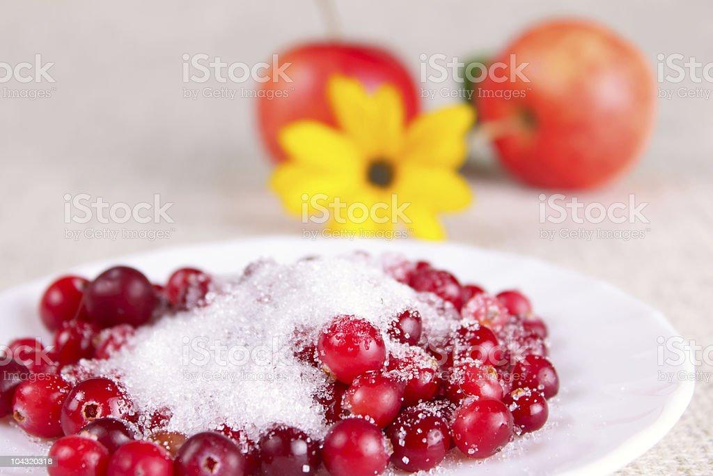 Cowberry cukru w odniesieniu do jabłek i kwiat zbiór zdjęć royalty-free