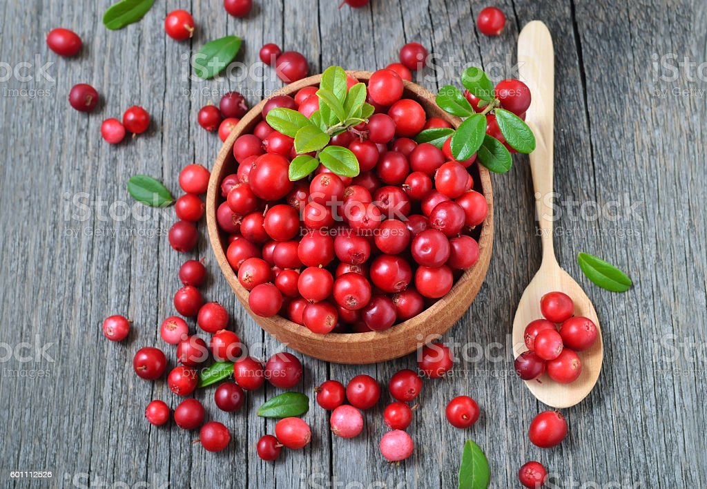 Cowberry in wooden bowl on rustic surface stock photo