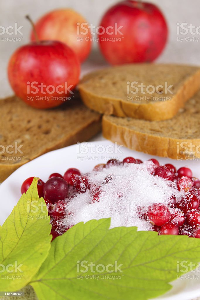 Cowberry sprinkled with sugar against apples royalty-free stock photo