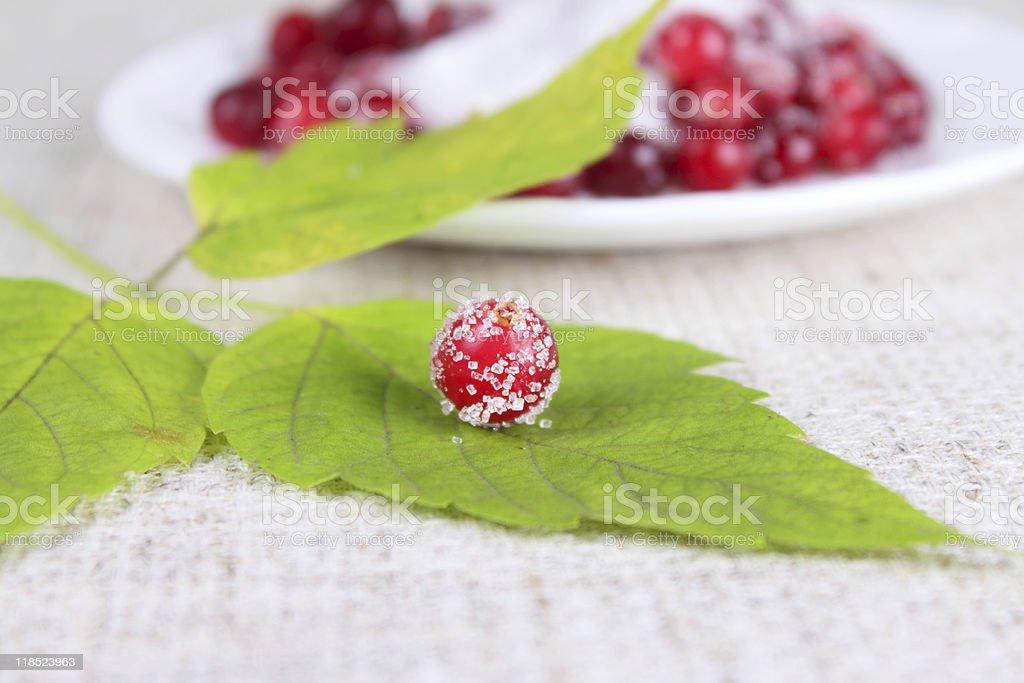 Cowberry usiane cukru na zielony Arkusz zbiór zdjęć royalty-free