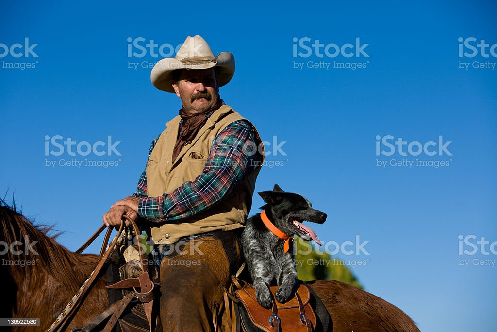 Cowboy and Friends stock photo