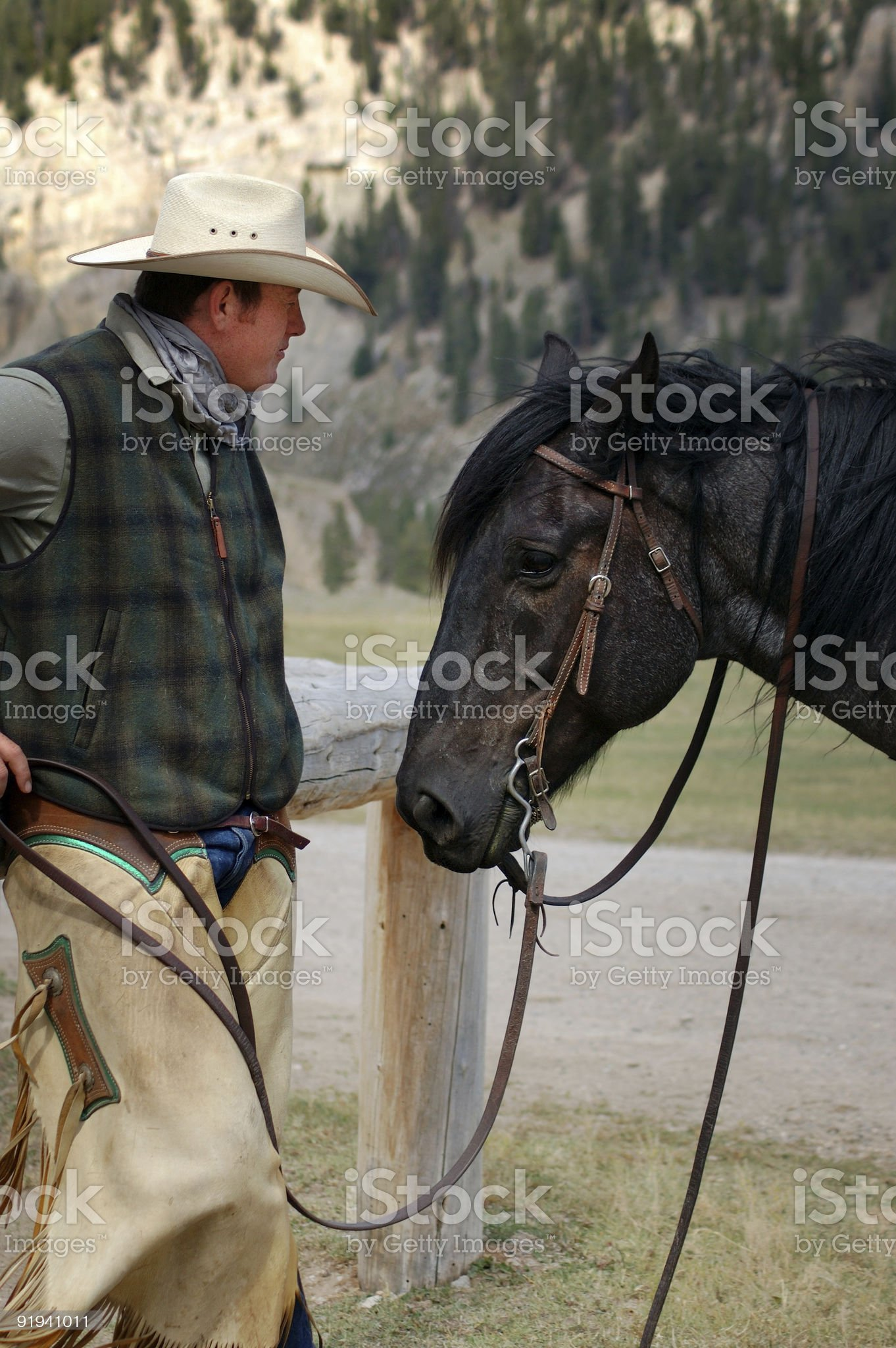 Cowboy and His Horse royalty-free stock photo