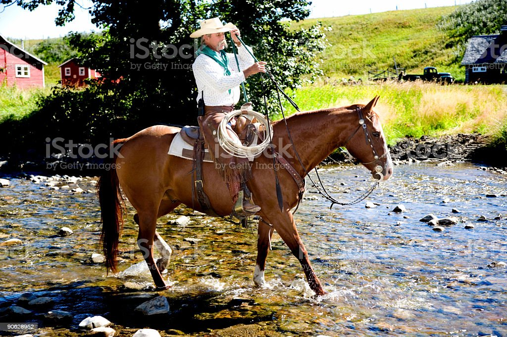 Cowboy and Horse stock photo