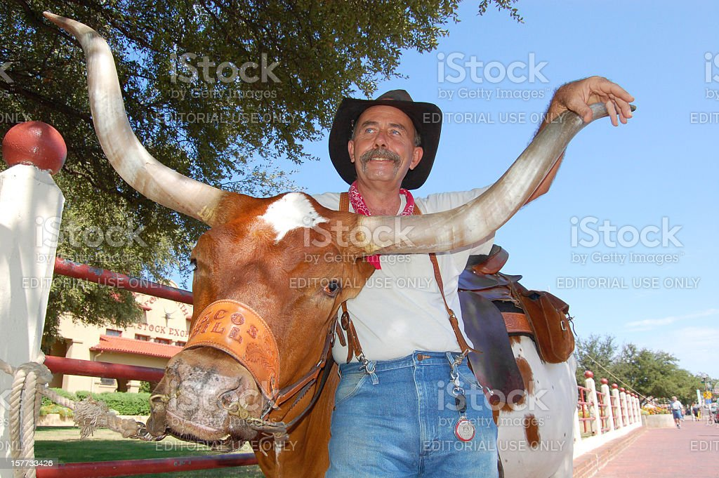 Cowboy and longhorn at Fort Worth Stock Yards royalty-free stock photo