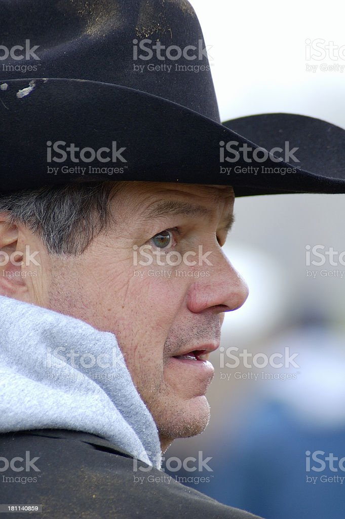 Cowboy By Day royalty-free stock photo