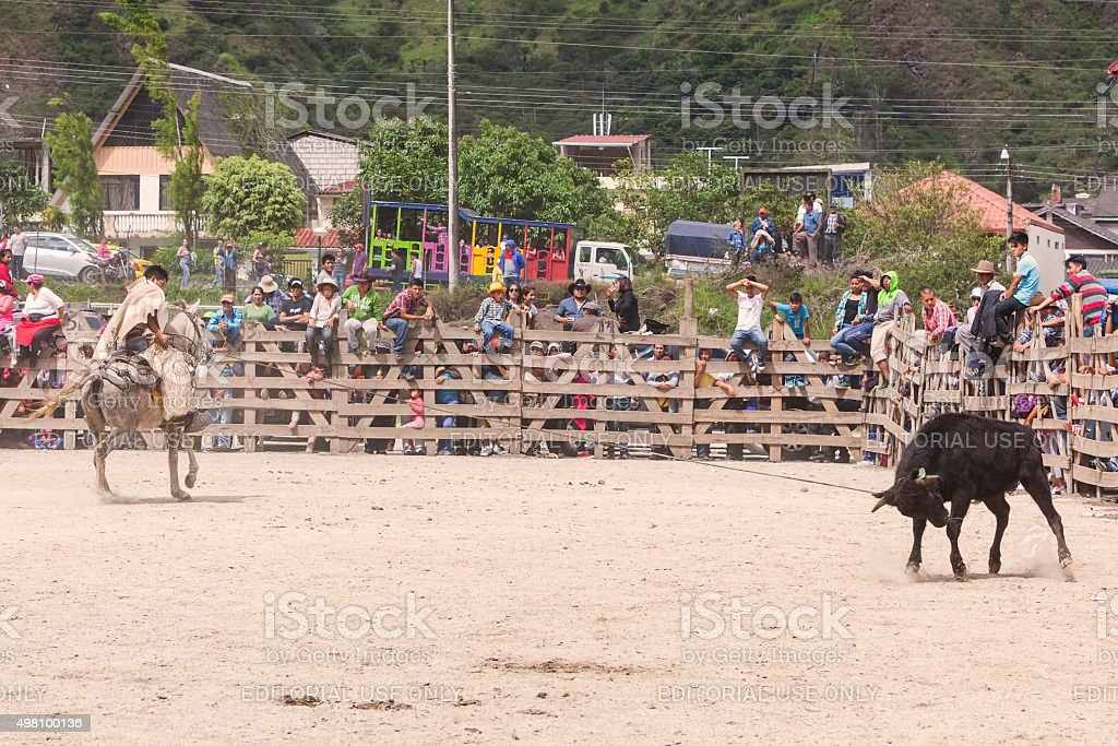 Cowboy Chasing A Bull, Public Competition stock photo