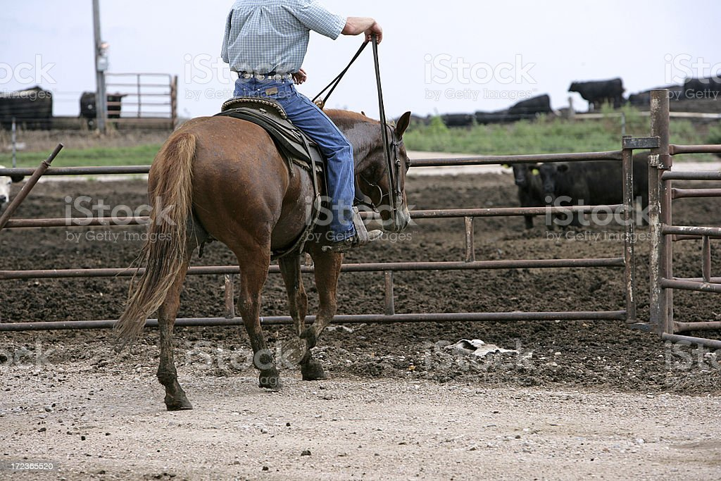 Cowboy From Behind royalty-free stock photo
