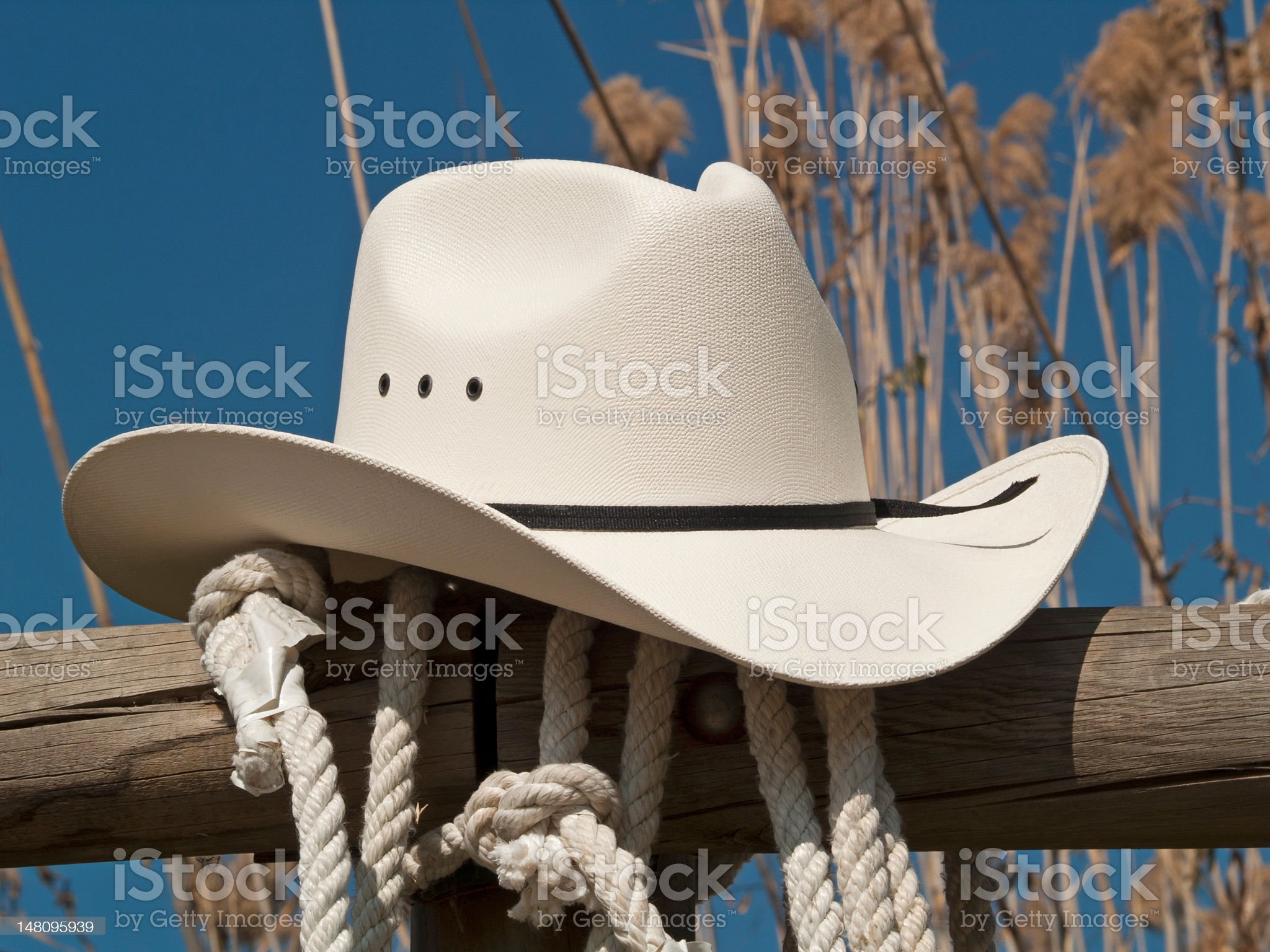 Cowboy hat in a fence royalty-free stock photo