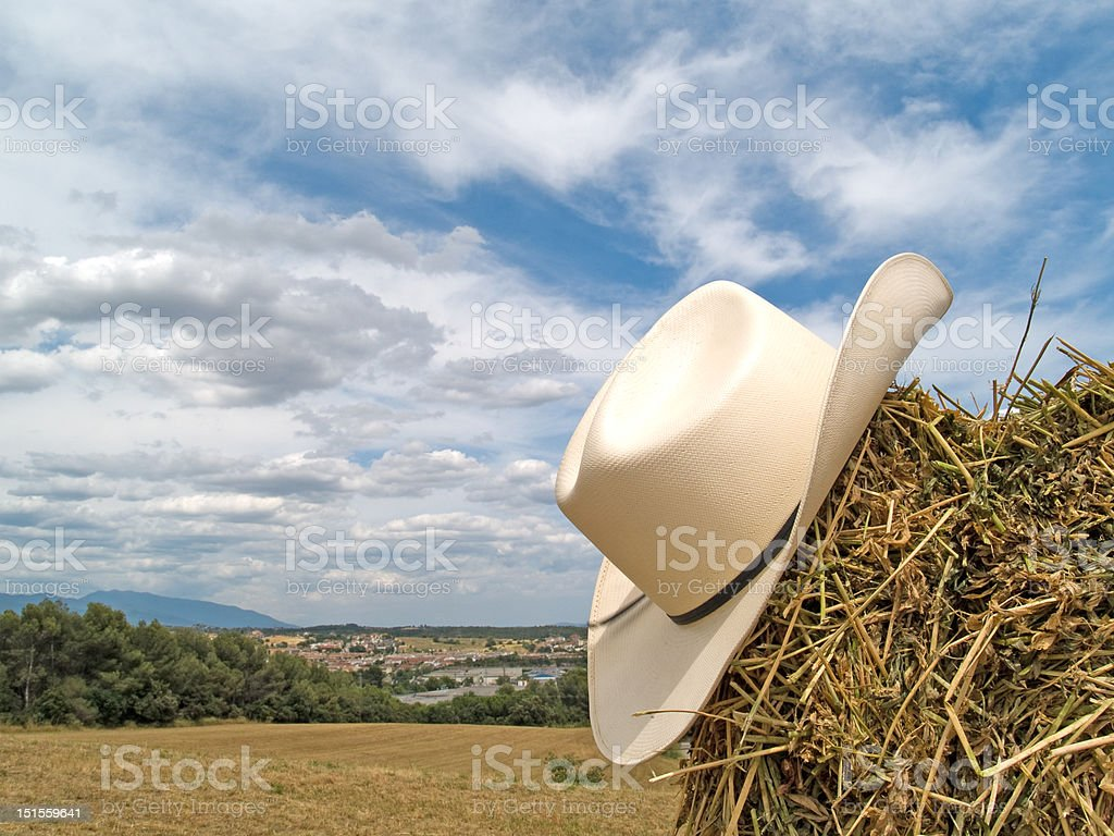 Cowboy hat in the straw stock photo