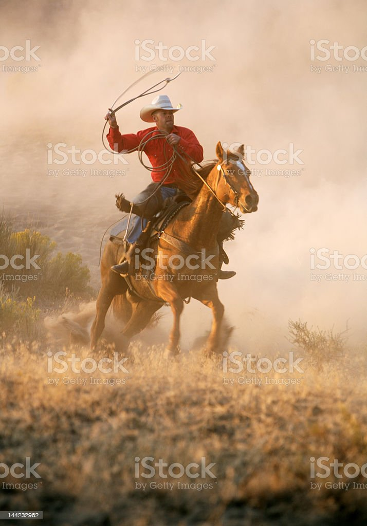 Cowboy in Action stock photo