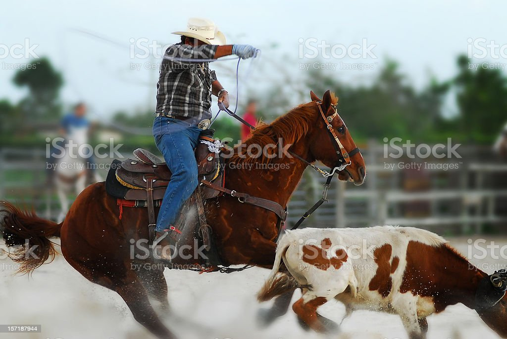 cowboy in action royalty-free stock photo