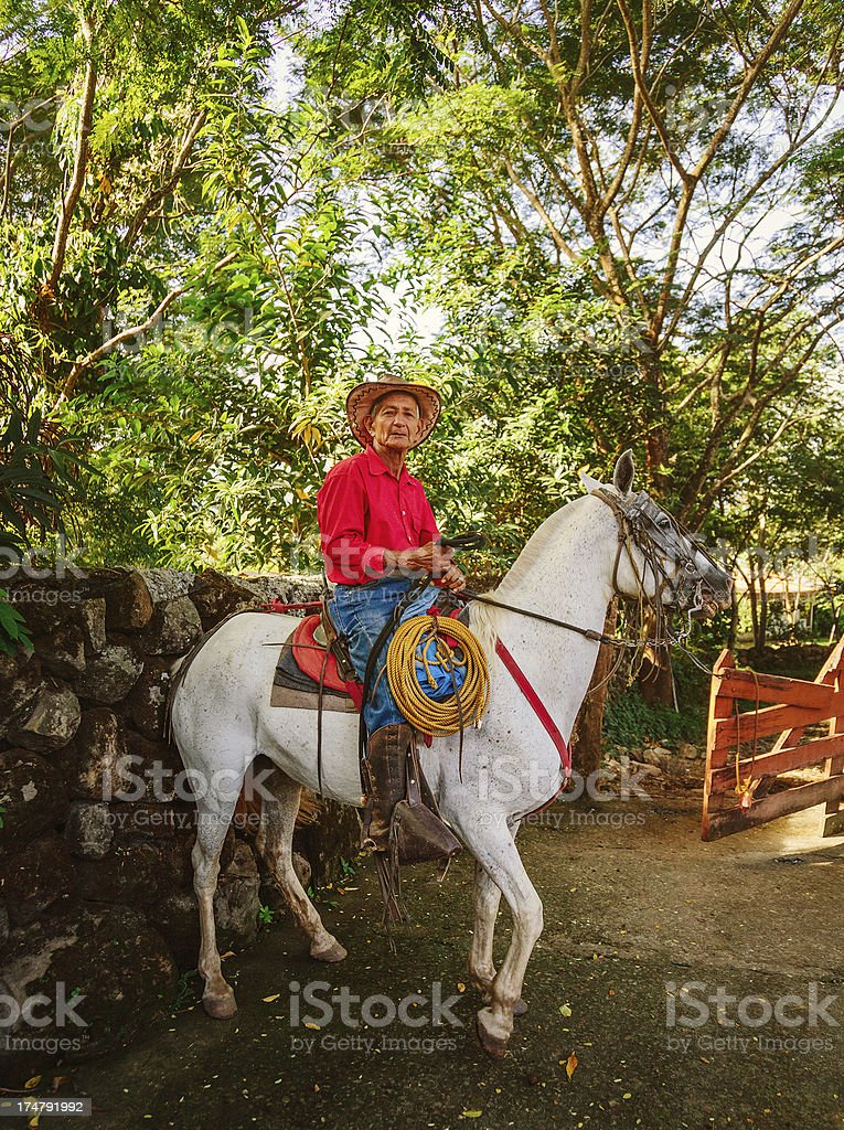 cowboy in costa rica royalty-free stock photo