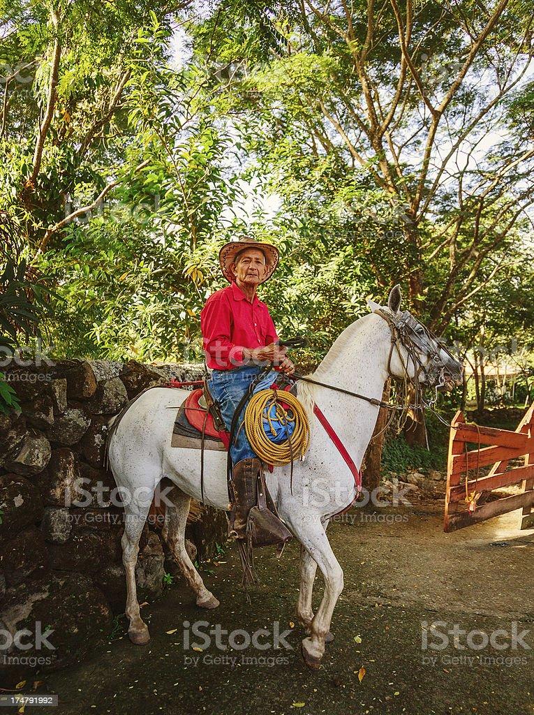 cowboy in costa rica stock photo