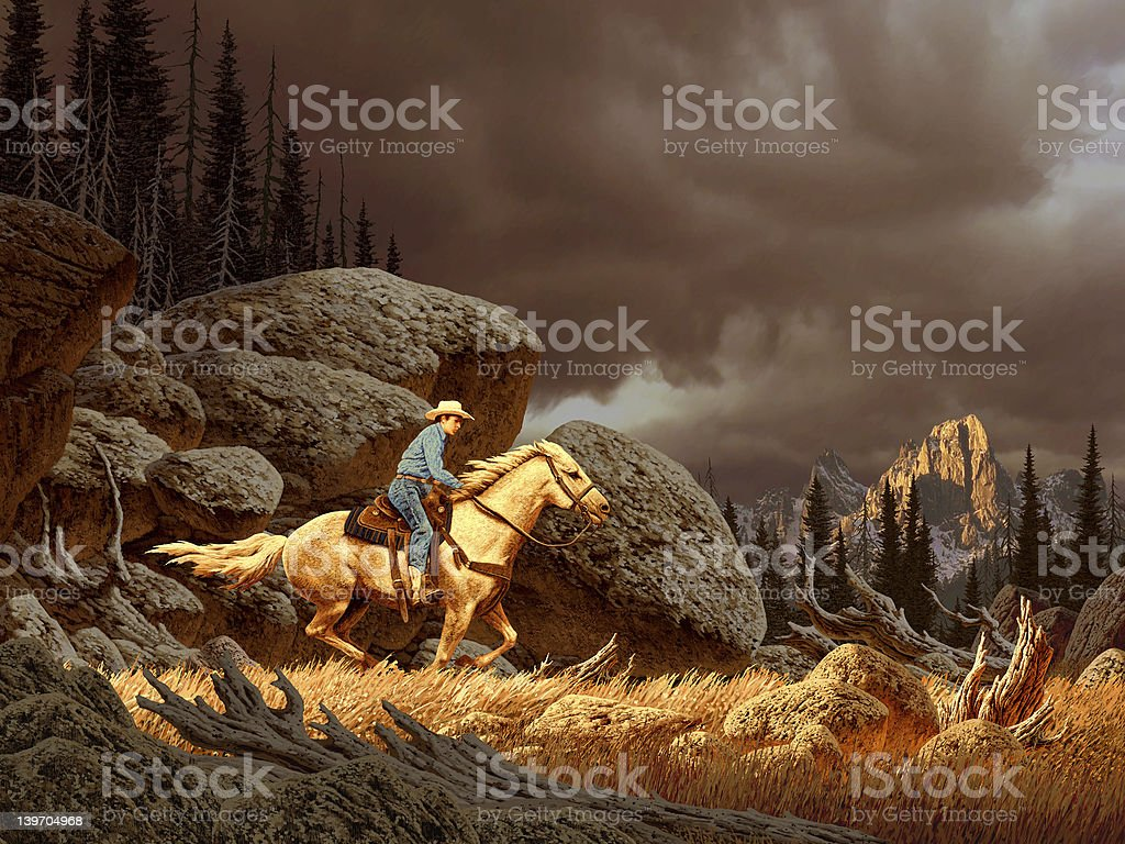Cowboy in Storm stock photo