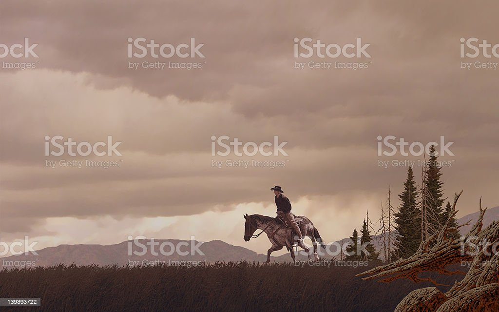 Cowboy in the Rocky Mountains stock photo
