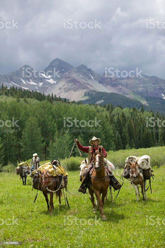 Cowboy leading a horse train stock photo