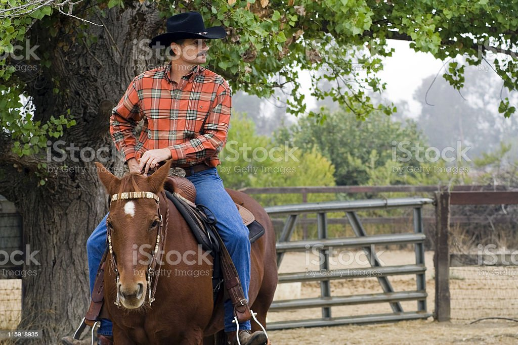 Cowboy on his Horse royalty-free stock photo