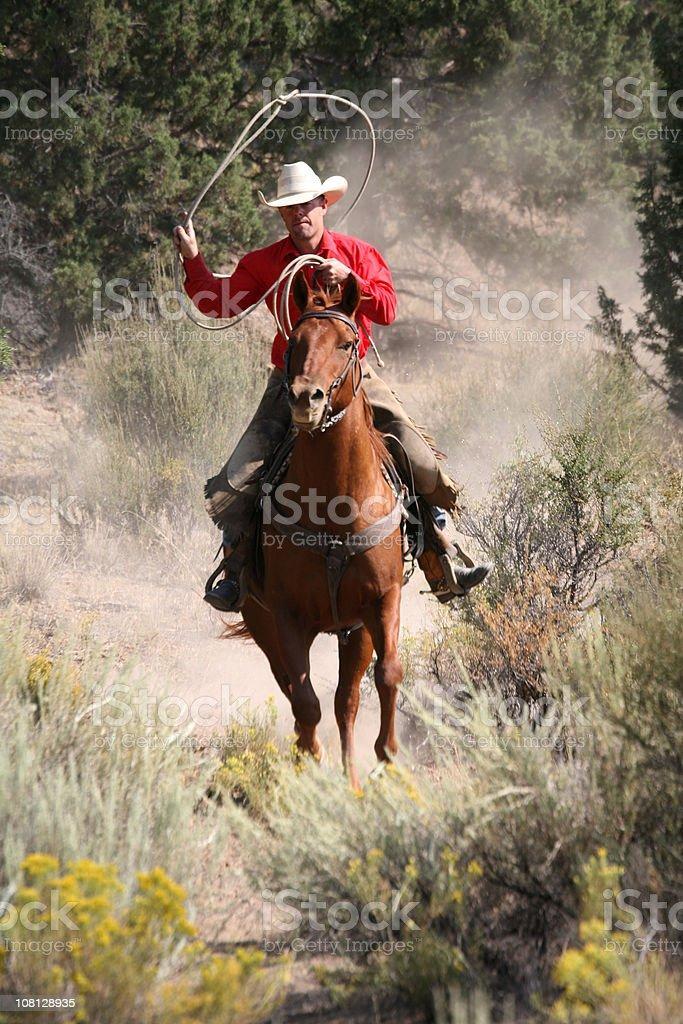 cowboy on horseback lassooeing royalty-free stock photo