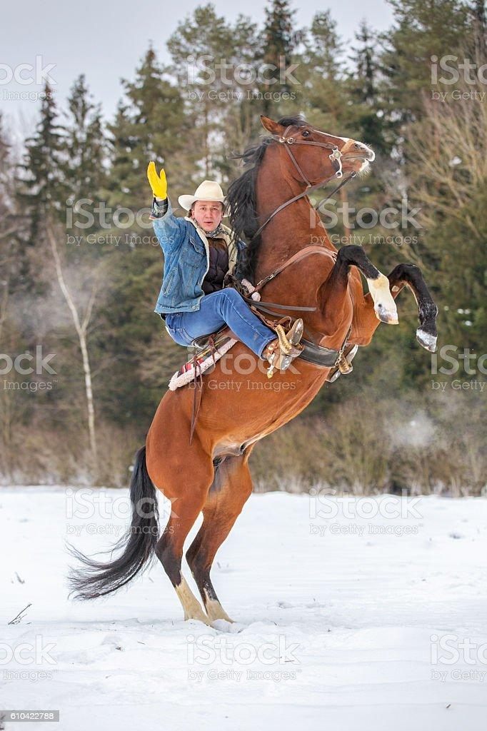 Cowboy on horseback. stock photo