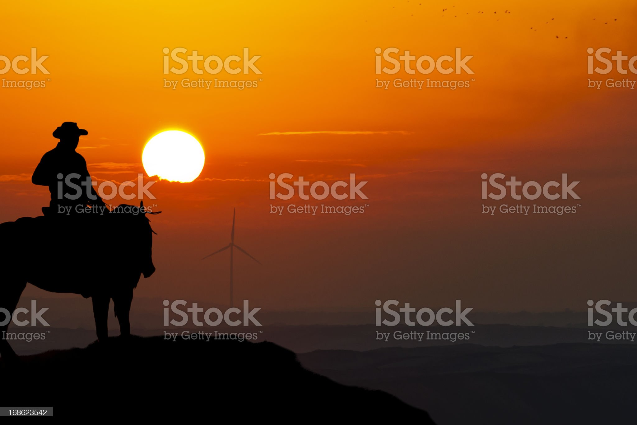 Cowboy rides during the sunset royalty-free stock photo