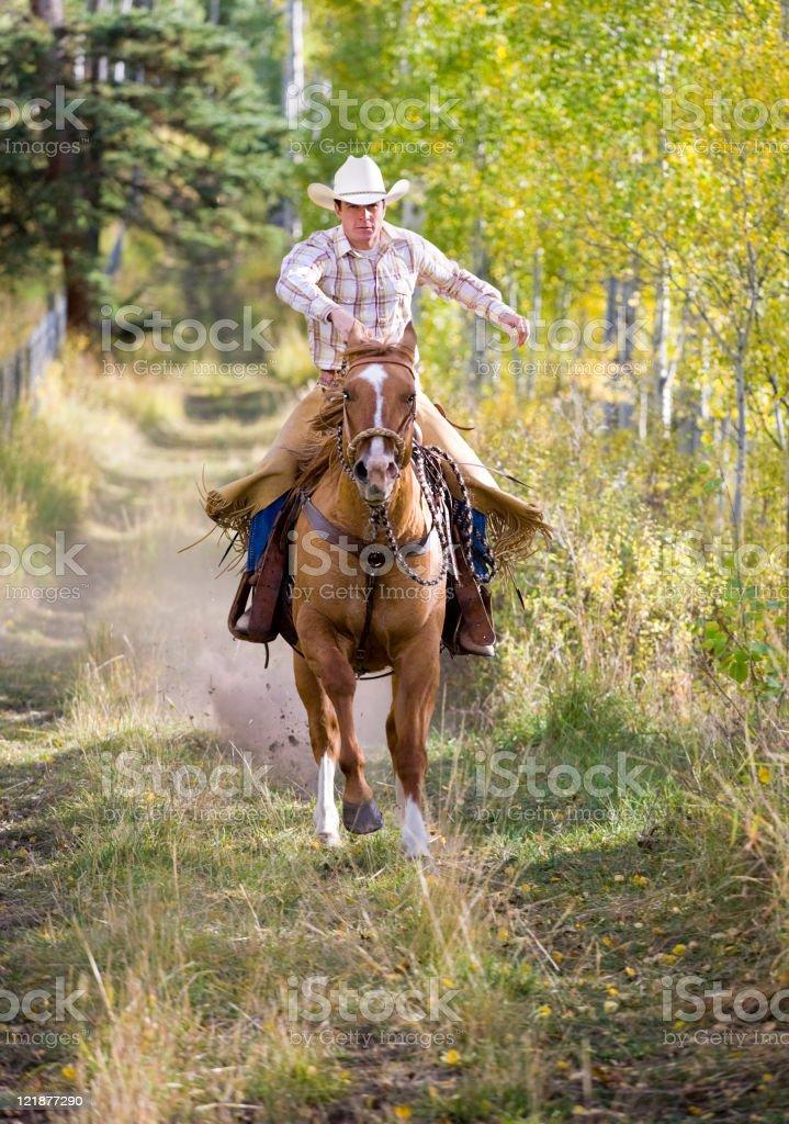 Cowboy Riding a Horse royalty-free stock photo