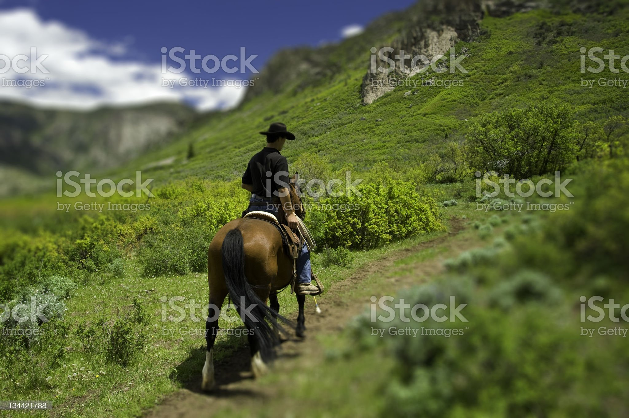 Cowboy Riding a Trail on Horse with Mountains Tilt Shift royalty-free stock photo