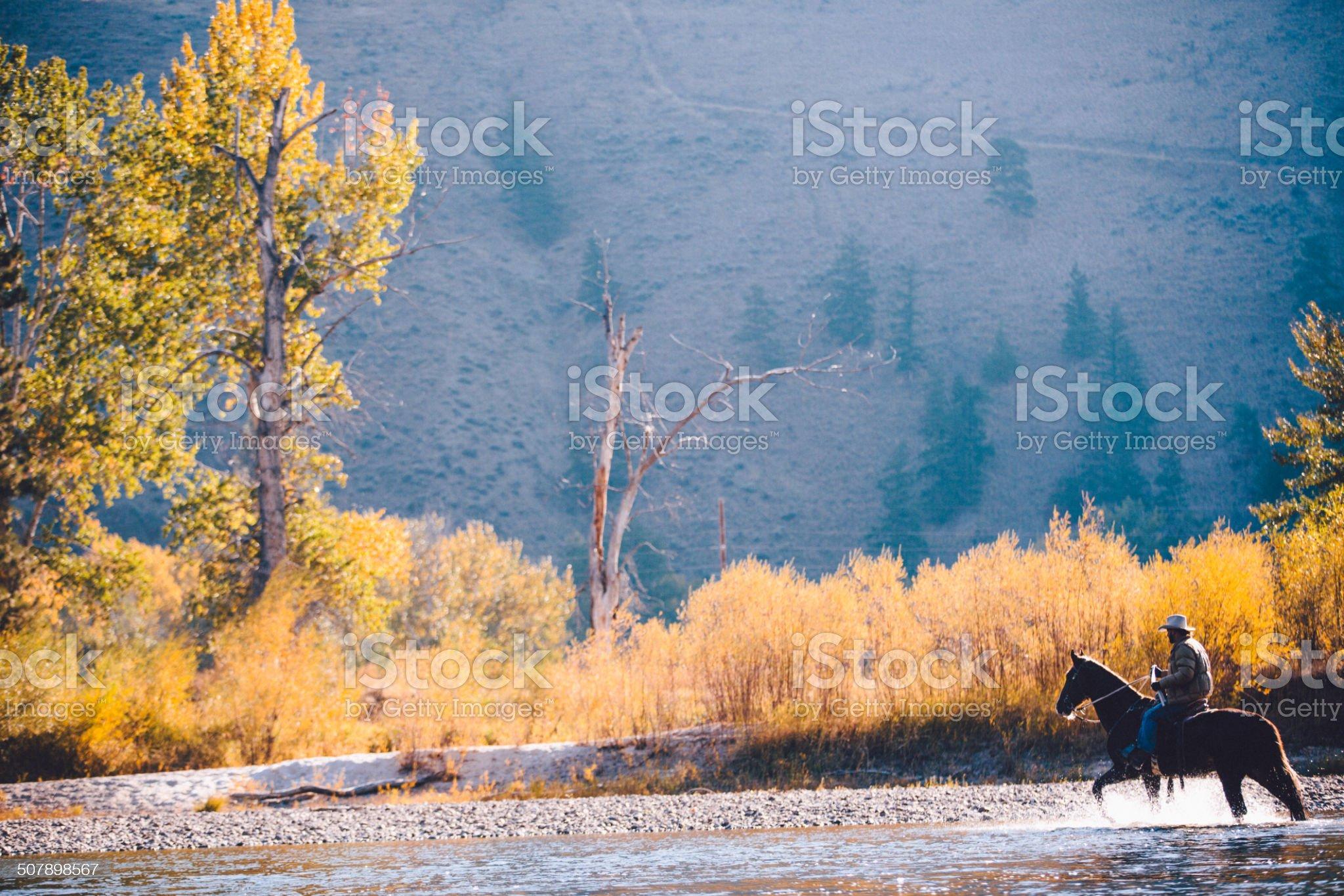 Cowboy riding horse along riverbank splashes through water royalty-free stock photo