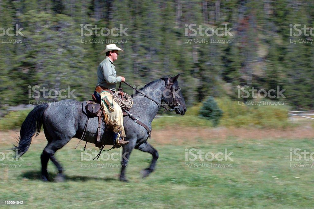 Cowboy Riding Horse stock photo