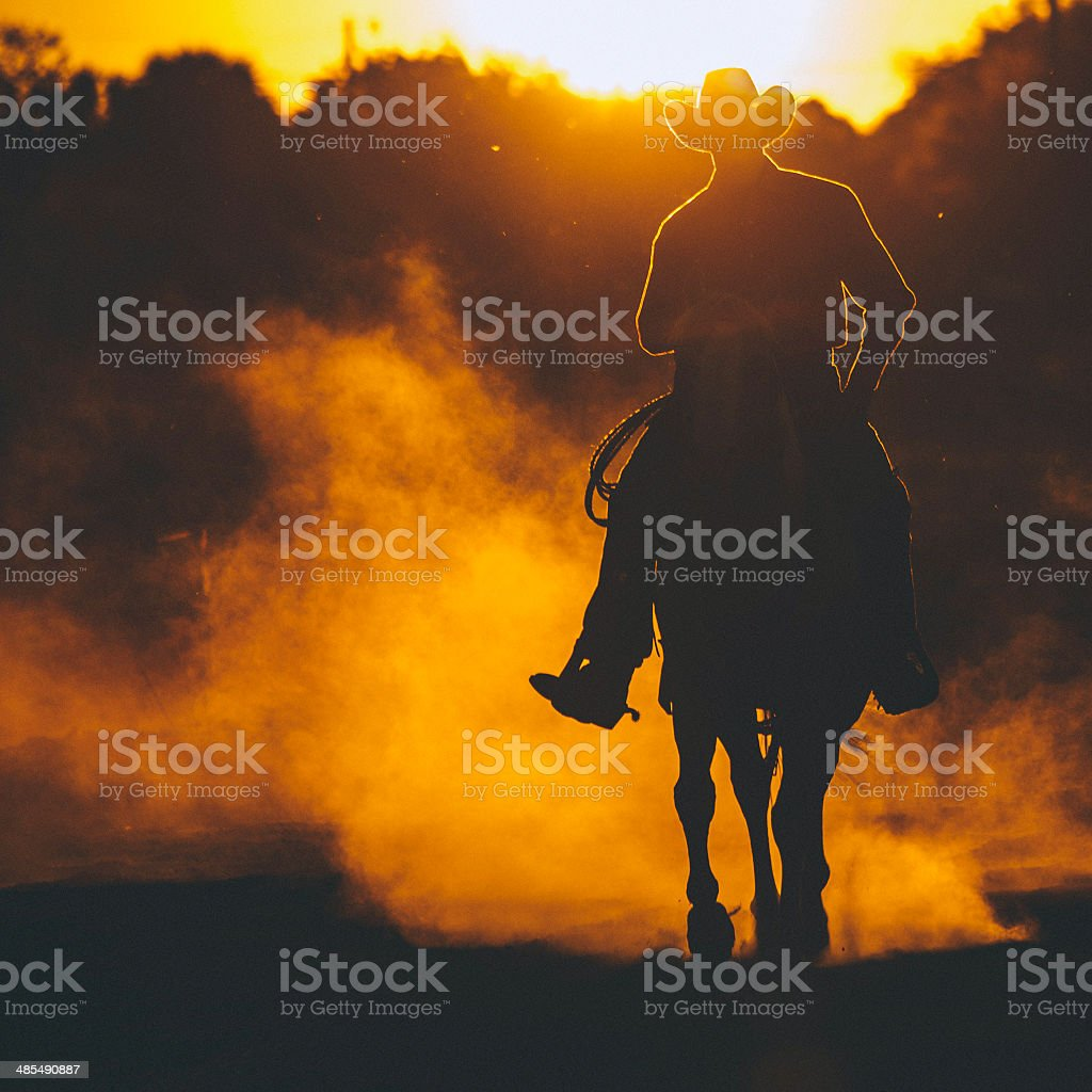 Cowboy riding in sunset. stock photo