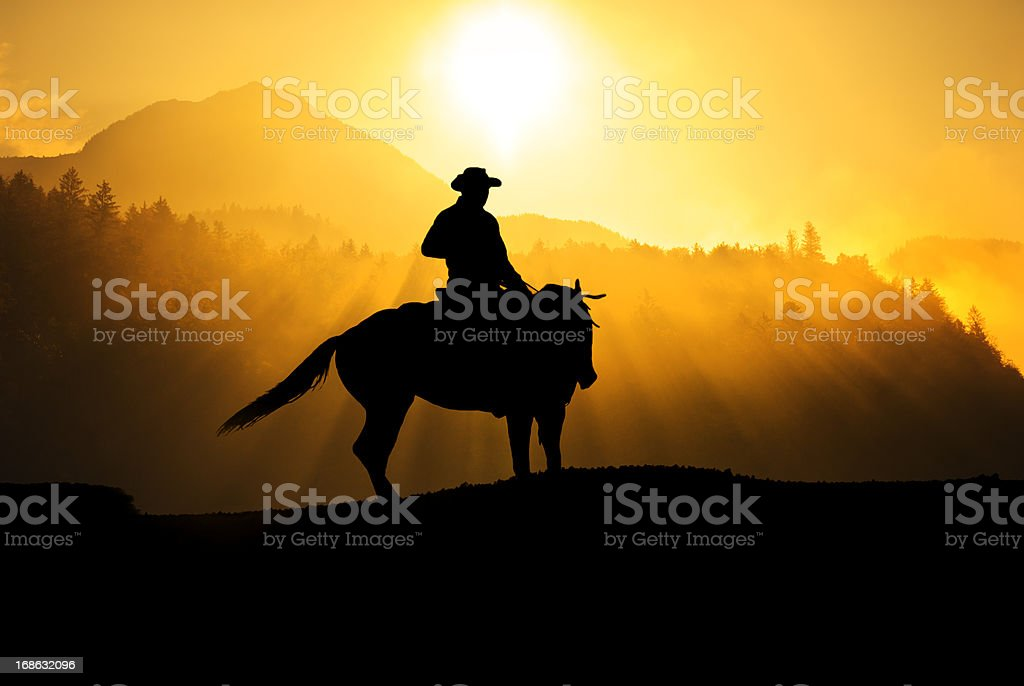 Cowboy riding in the mountains stock photo