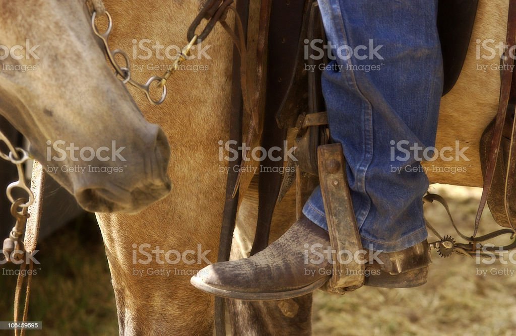Cowboy Riding royalty-free stock photo